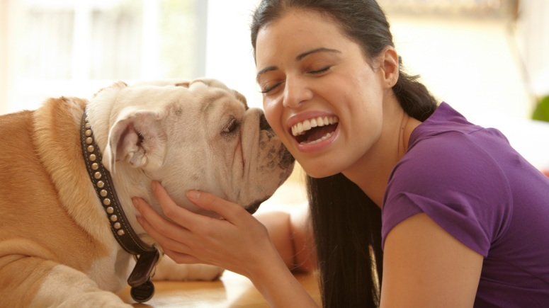 top-10-dog-breeds-for-single-women